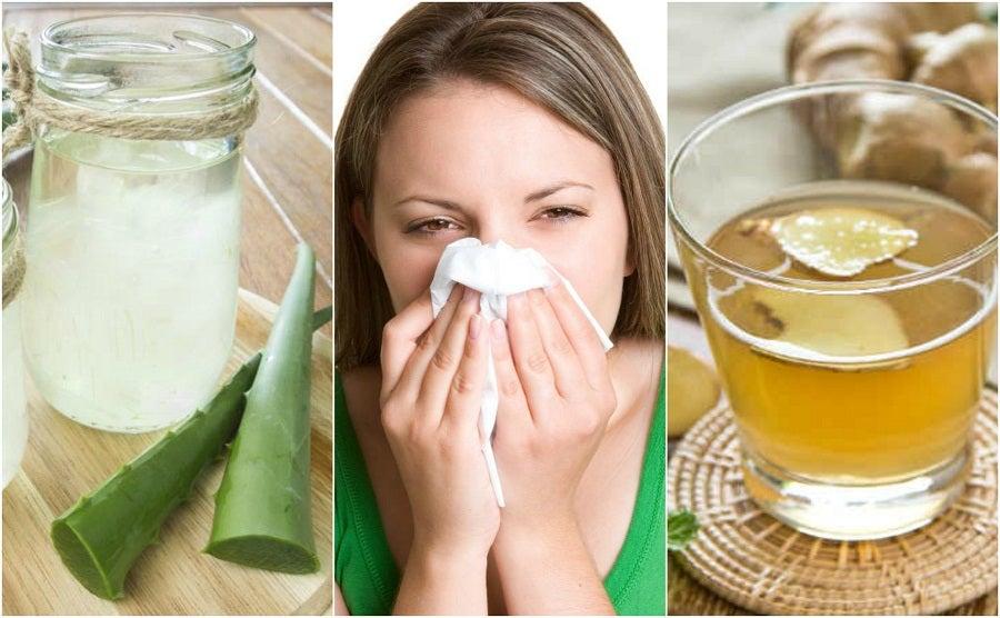 Cómo calmar la rinitis alérgica con 5 remedios de origen natural