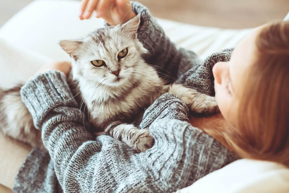 Cómo determinar qué mascota es más beneficiosa para la salud