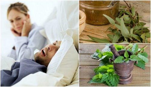 Cómo hacer 5 remedios caseros para reducir los ronquidos