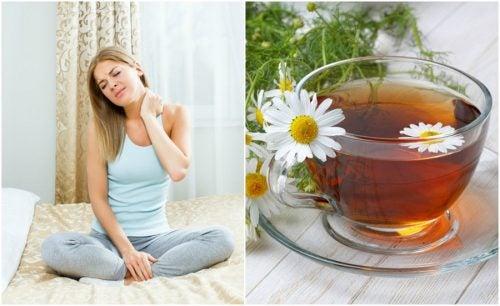 Cómo relajar los músculos de forma natural con una infusión de manzanilla, menta y limoncillo