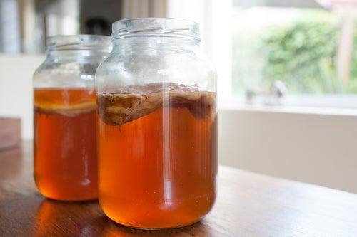 Infusión del té de kombucha