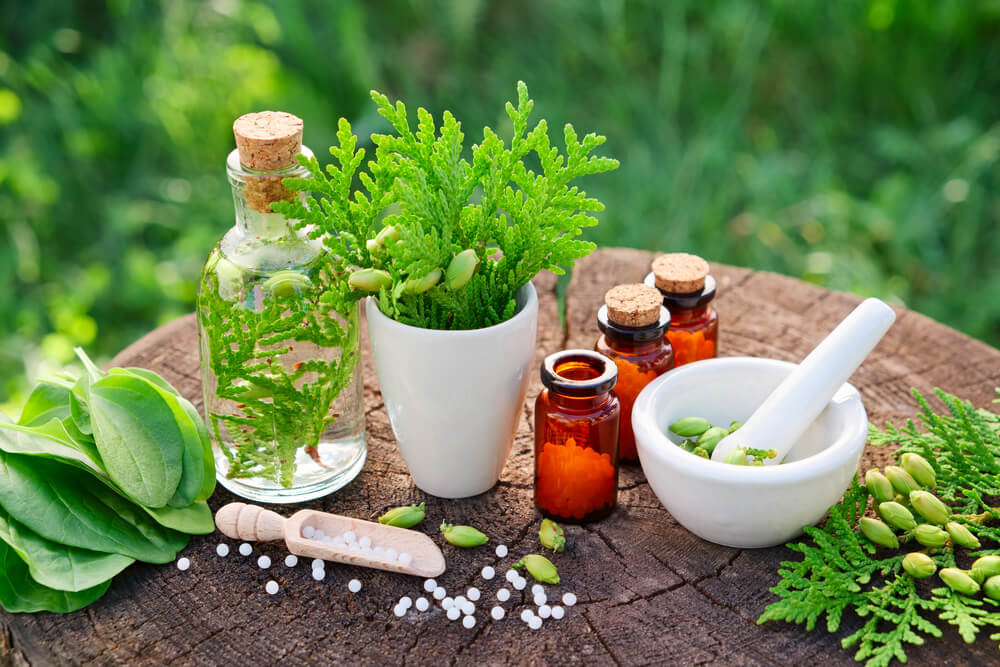 Plantago como alimentos que te ayudarán a ir al baño