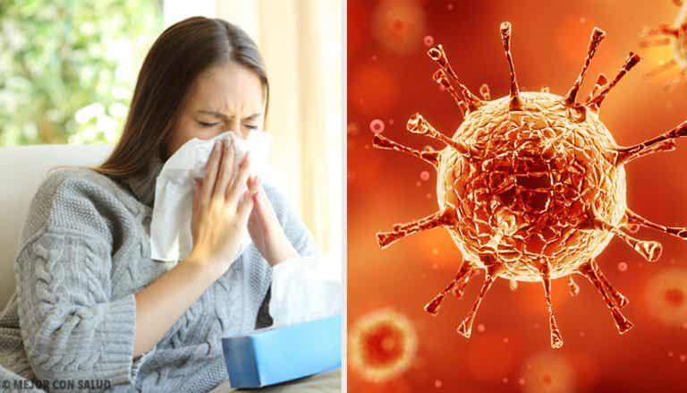 ¿Por qué los virus son cada vez más fuertes?