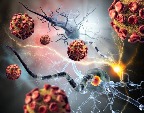Los tumores incrementan la fosfatasa alcalina