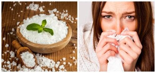 Los 4 mejores antialérgicos naturales. ¿Los conocías?