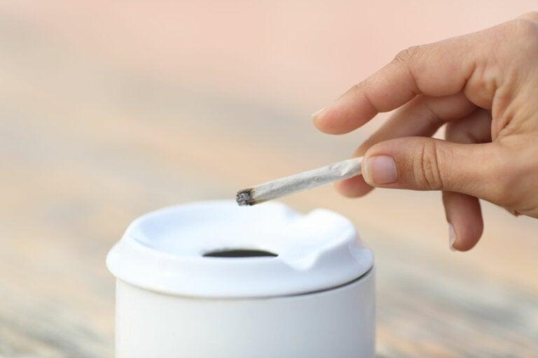 8 falsas creencias sobre el tabaco que exponen la salud del consumidor