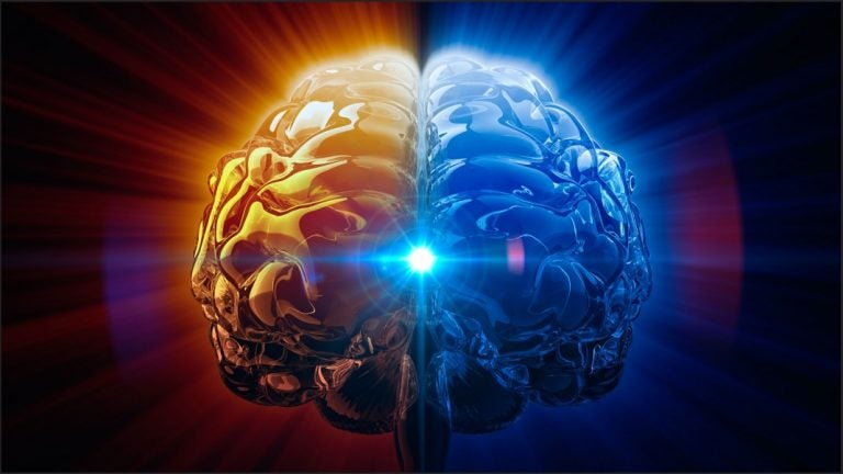 Glándula pineal: la reguladora de ciclos y el ojo vestigial