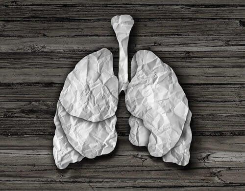 la bronquitis alergica es contagiosa