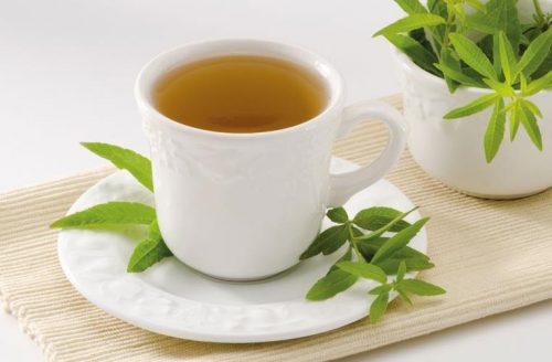 Infusión de hierbaluisa: una de las hierbas complemento de dieta