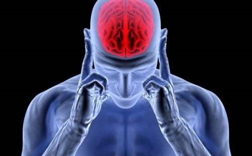 Adrenalina: la hormona de la activación, el estrés y las cefaleas