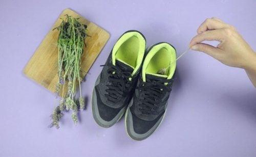 Zapatos cómodos para tratar y prevenir los juanetes