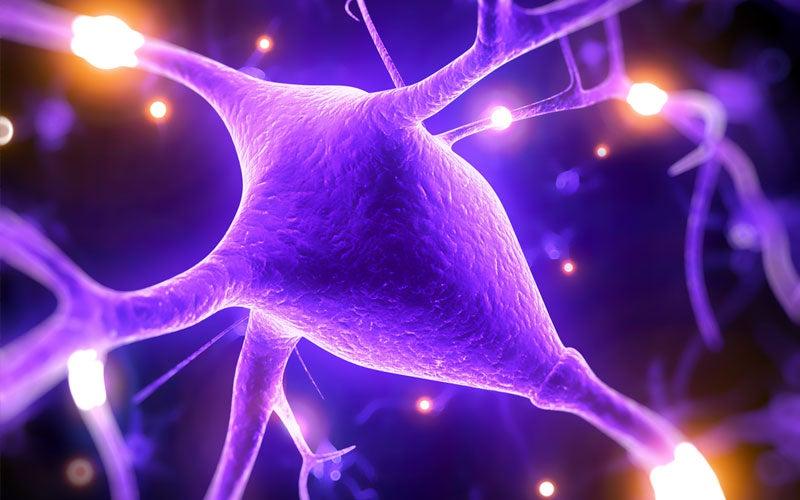 5 razones por las que el MAGNESIO mejora las capacidades del cerebro