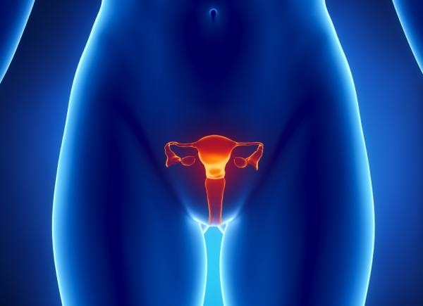 Pinchazos en los ovarios