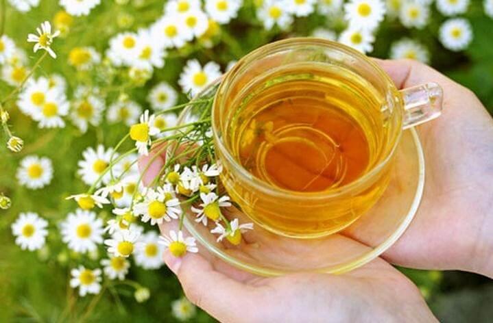 6 propiedades medicinales de la manzanilla