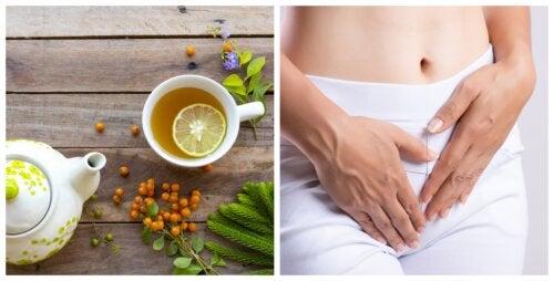 5 remedios caseros que te ayudan a controlar el exceso de flujo vaginal