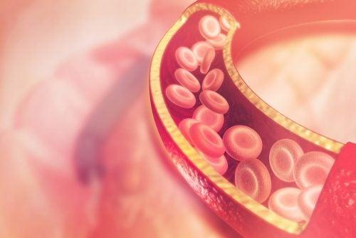 Recreación de vaso sanguíneo