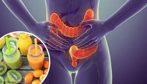 5 alimentos para limpiar el colon