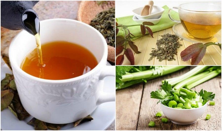 5 remedios herbales que te ayudan a estimular el sistema linfático
