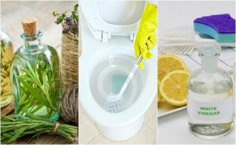 5 soluciones ecológicas para desinfectar tu baño sin exponer tu salud