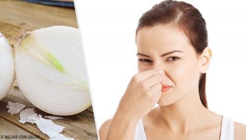 8 alimentos que causan un olor corporal desagradable