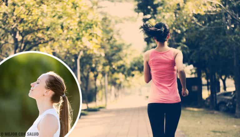Actividades que te aportarán la tranquilidad que deseas en tu vida