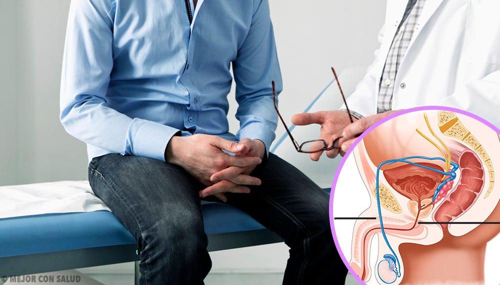 Anatomía del pene – Mejor con Salud