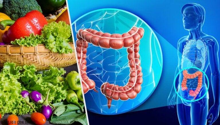 Consejos para recuperar la flora intestinal