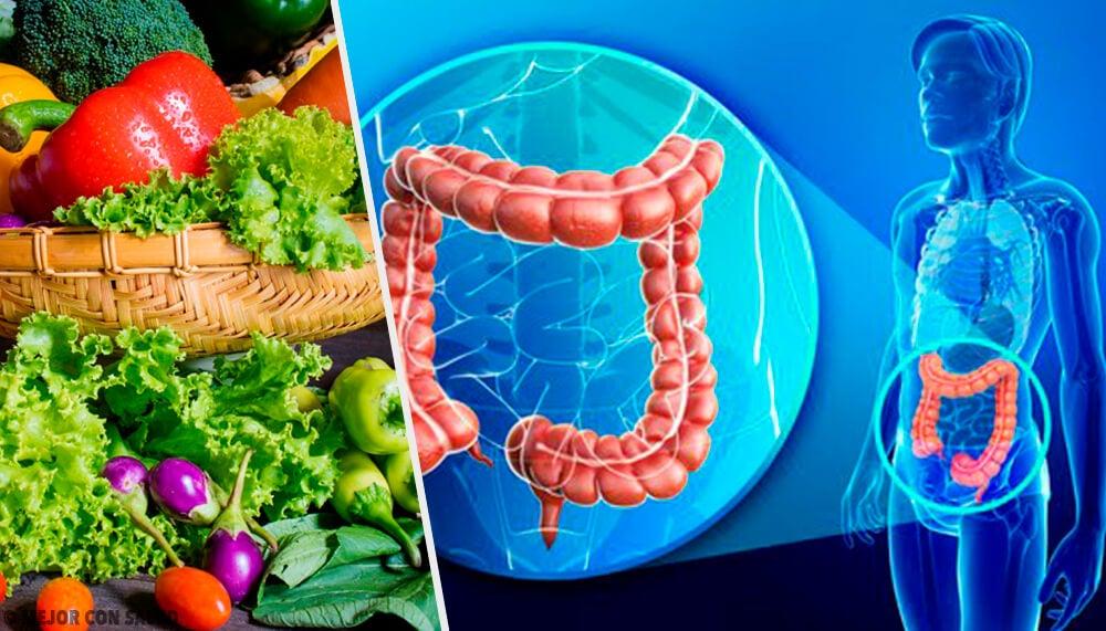 Consejos para recuperar la flora intestinal — Mejor con Salud