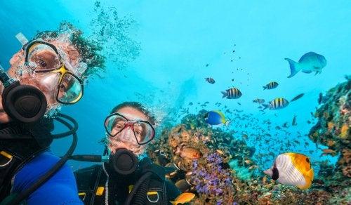 Pareja haciendo buceo en el mar rodeados de peces de colores.