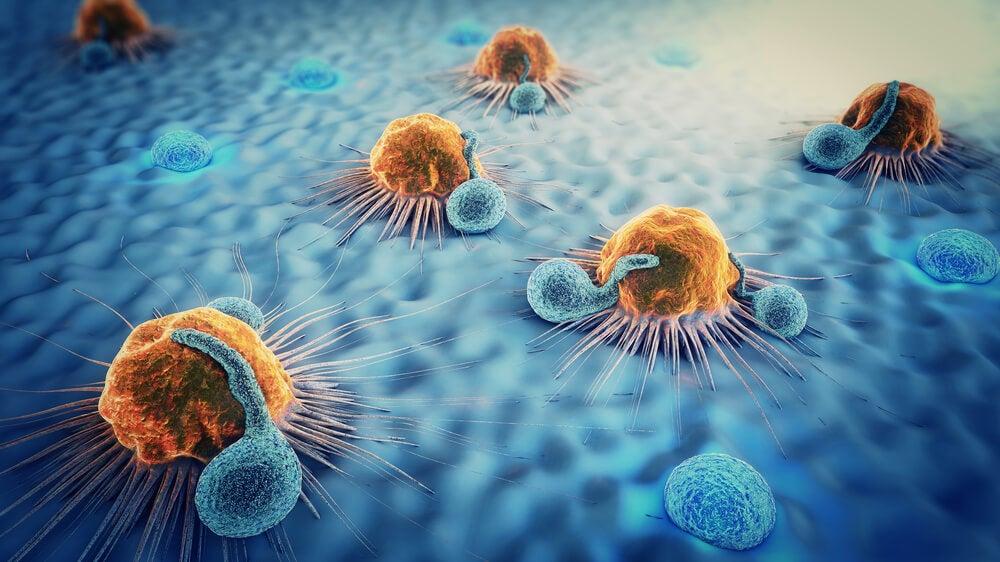 Células involucradas y tipos de cáncer de piel