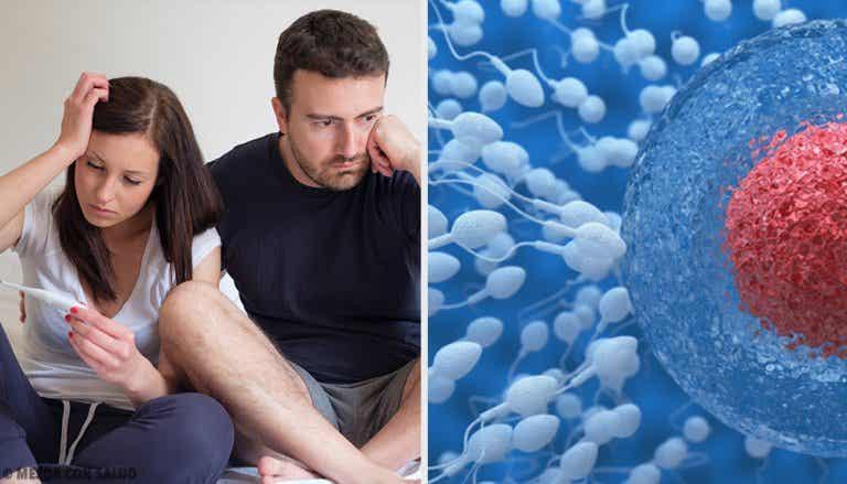 Cómo mejorar la fertilidad masculina