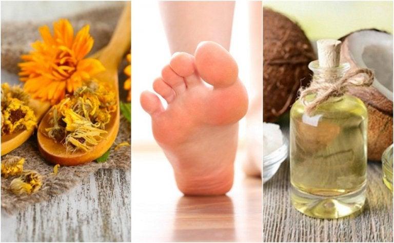 Cómo preparar 5 remedios naturales para las úlceras del pie diabético