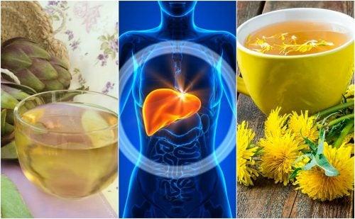 Combate el hígado graso de forma natural con 5 remedios herbales