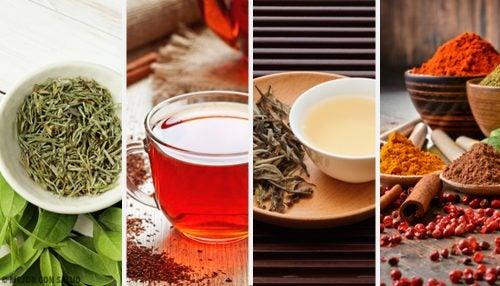 5 deliciosos tés para desintoxicar tu cuerpo