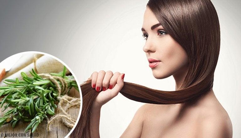 Hierbas y especias que fomentan el crecimiento del cabello