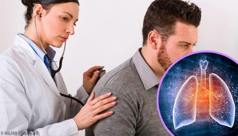 Los pulmones y sus características