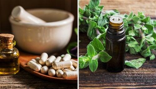 ¿Sabes cuáles son los mejores antibióticos naturales?