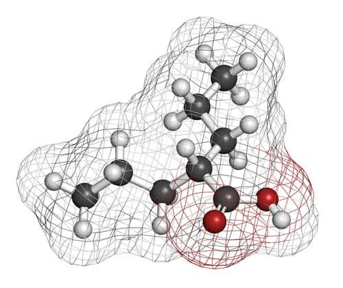 Según su capacidad para inhibir glutamato o potenciar GABA