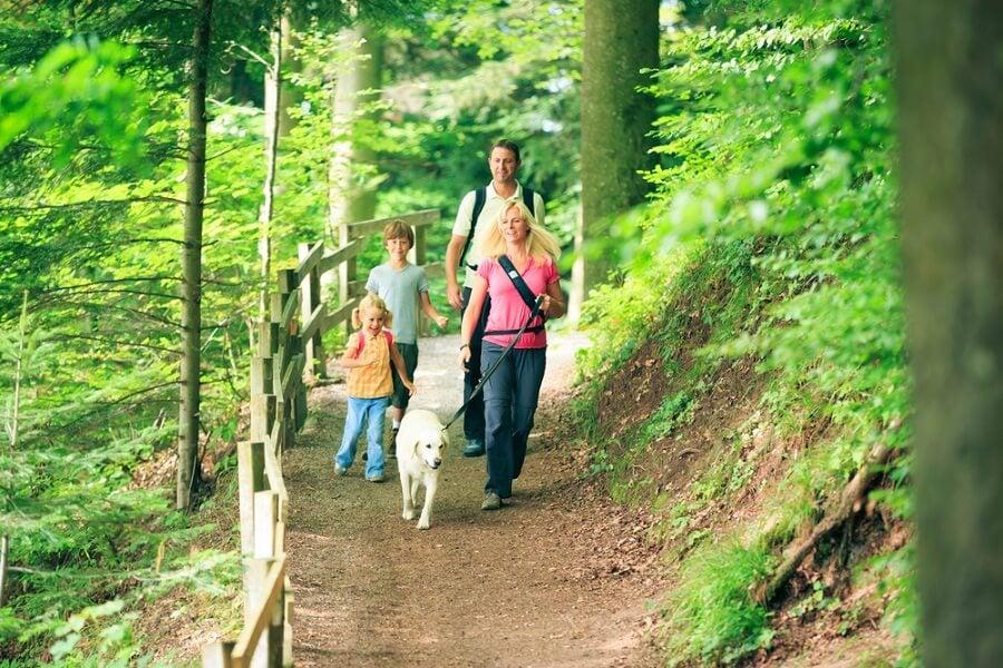 Descubre los increíbles beneficios de hacer senderismo
