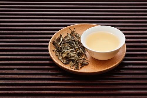 El té blanco, un milagro de la naturaleza