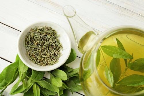 El té verde puede ayudarnos a tratar el hígado inflamado, ayudando a la regeneración celular.