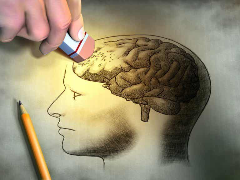 Claves para mejorar la memoria a corto plazo