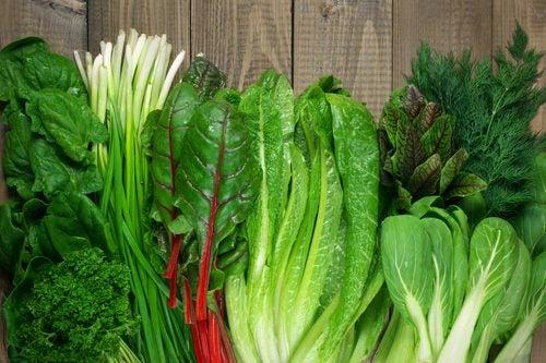 Vegetales de hoja verde.