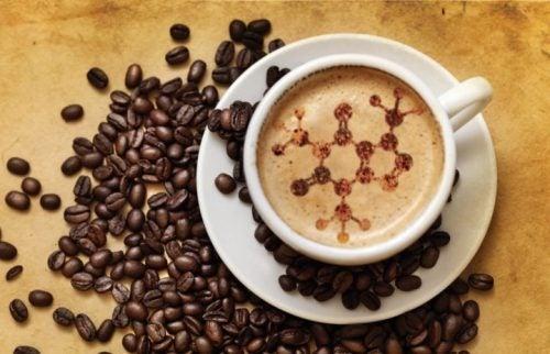 alimentos cafe
