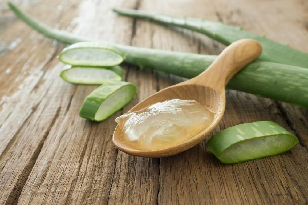 Crema de áloe vera en cuchara de madera con trozos de planta alrededor