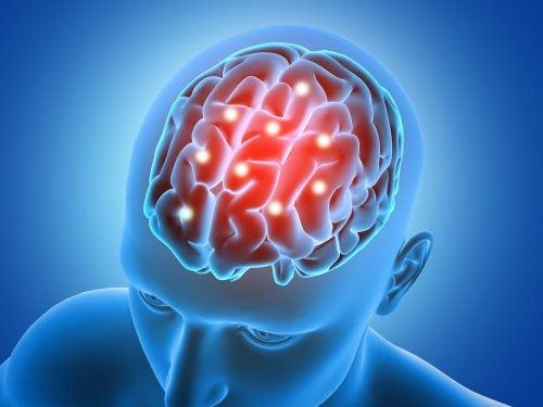 7 grandes productos naturales para fortalecer el cerebro