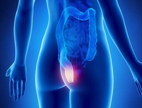 Increíble dieta depurativa para limpiar el colon