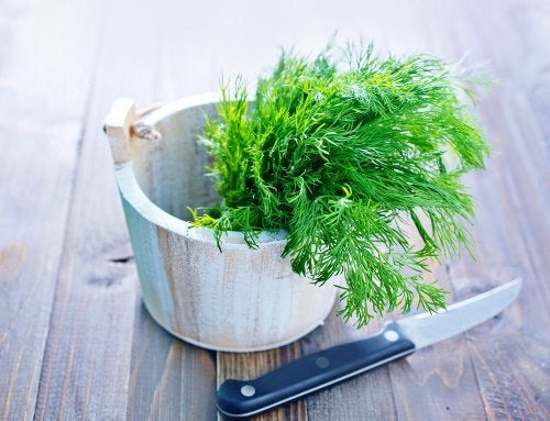 El eneldo es una especia deliciosa para combinar con muchos ingredientes.