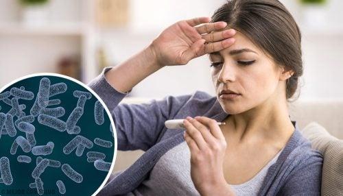 Causas de fiebre tifoidea en adultos