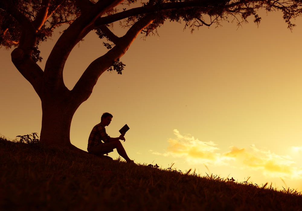 Hombre leyendo un libro bajo un árbol